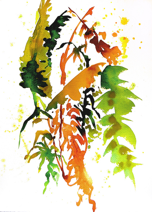 WatercolorLeafStudy3