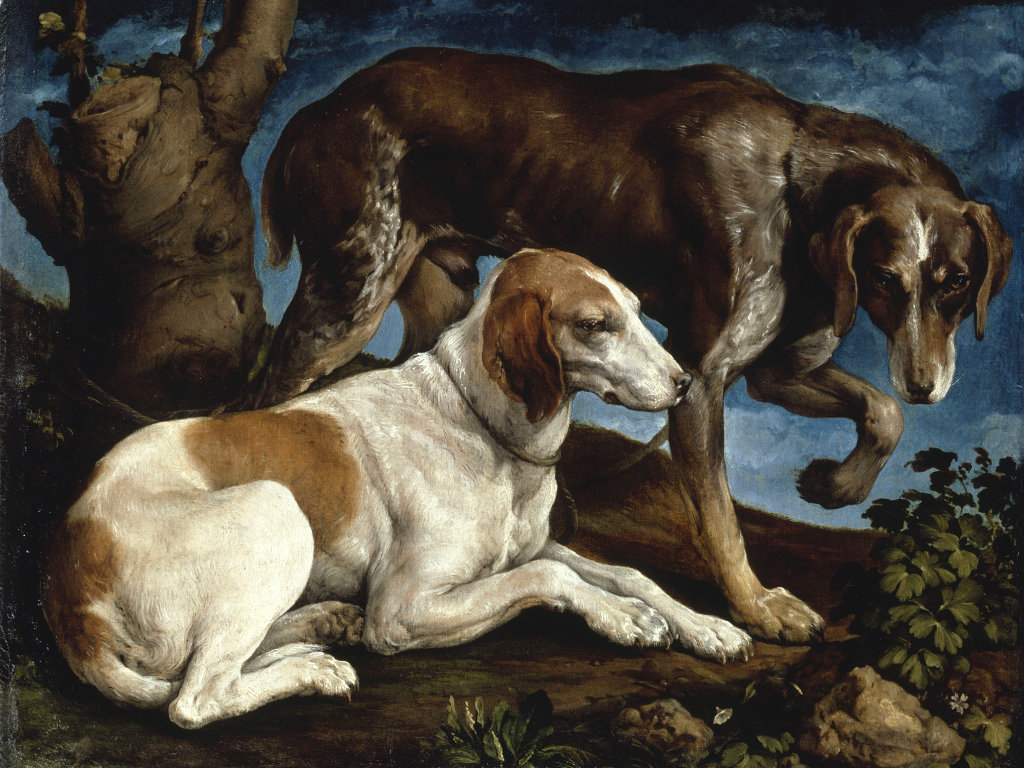 Two Hunting Dogs Tied to a Tree Stump by Jacopo Bassano in 1548. Museo del Louvre
