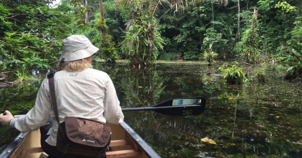 Birding hotspot in Costa Rican Wetland