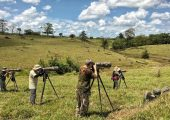 Birdwatchers birdwatching in Costa Rica, Northern Dry Tropics