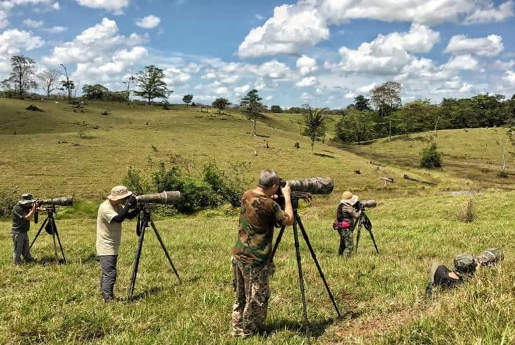 Birdwatchers in Costa Rican, Northern Dry Tropics