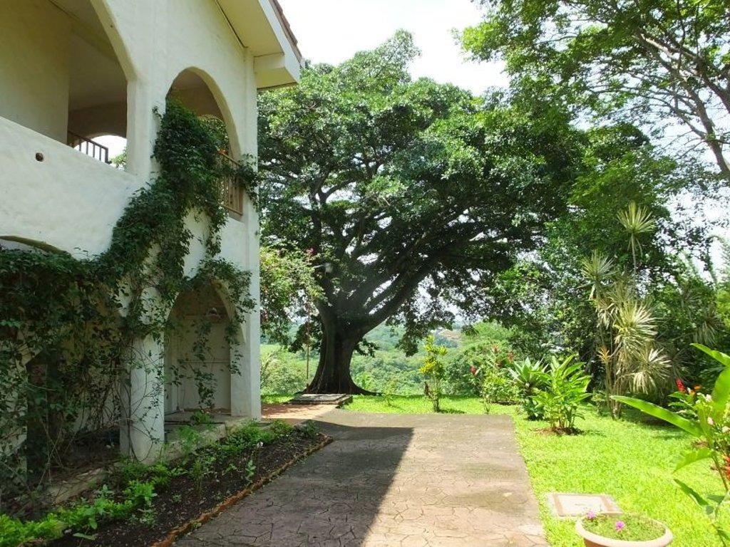 Villa San Ignacio birding gardens